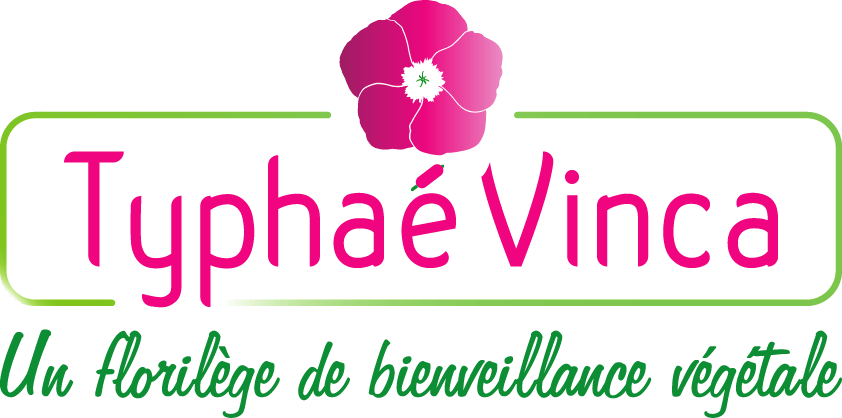 Typhae Vinca